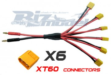 XT60 Parallel Charger BIZ-BCA032